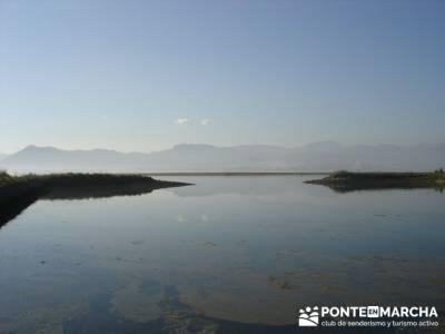 Marismas de Santoña (visita Ornitológica); grupos camino de santiago